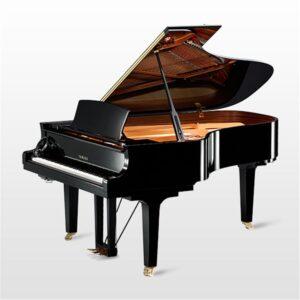 Silent Grand Piano c6x